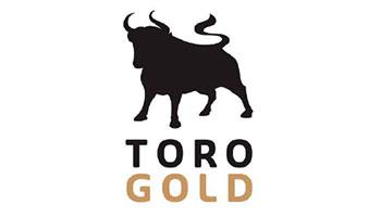 client toro